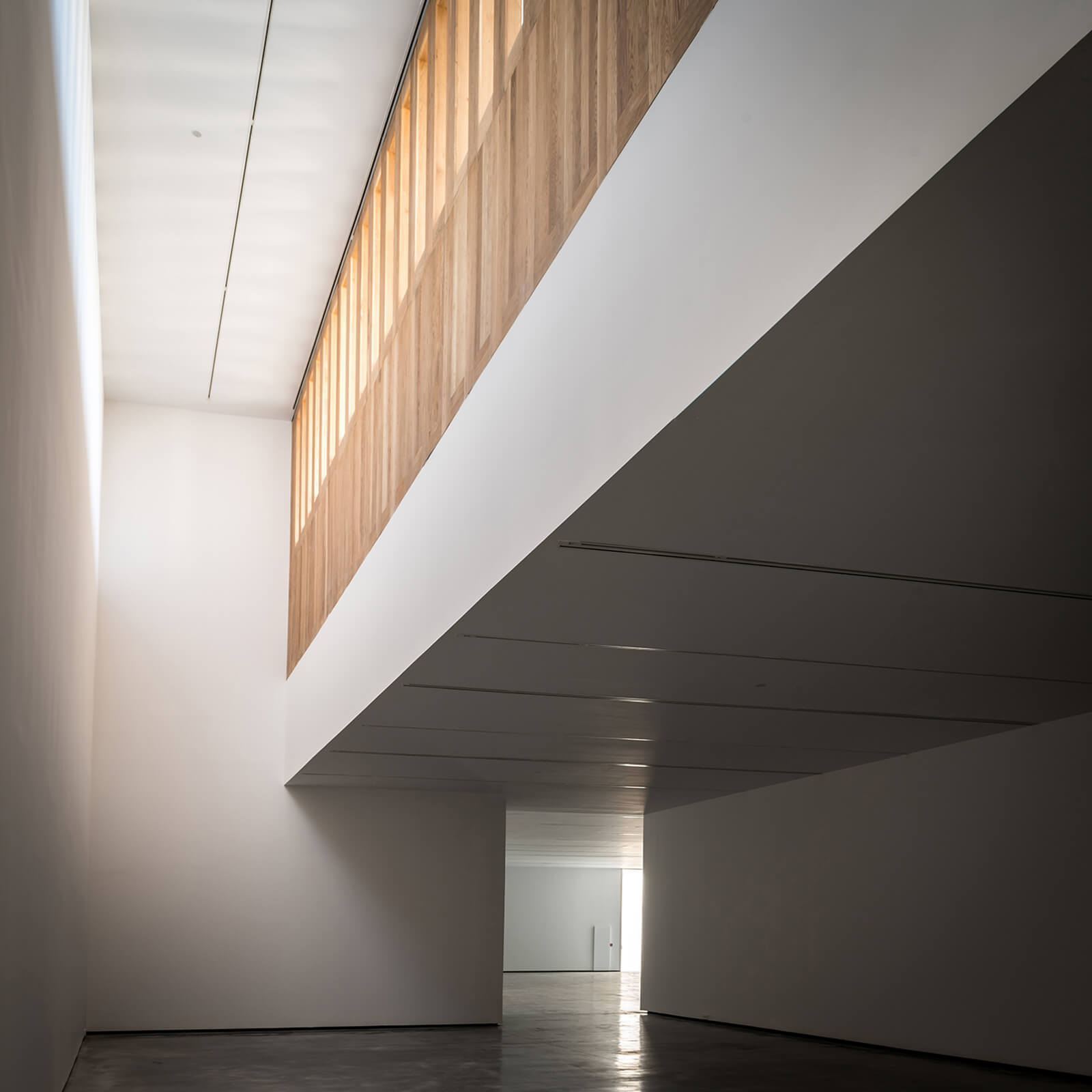 Museo de Arte Contemporáneo Helga de Alvear  - 10.2 54