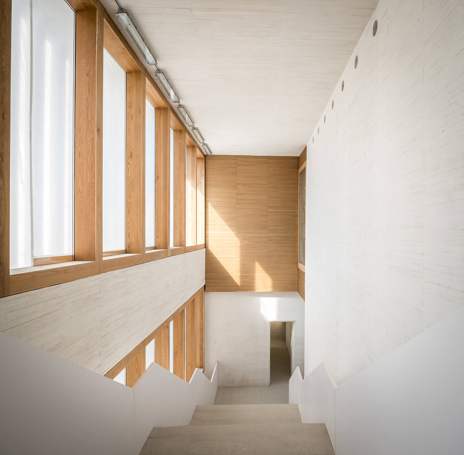 Museo de Arte Contemporáneo Helga de Alvear  - 11 1 56
