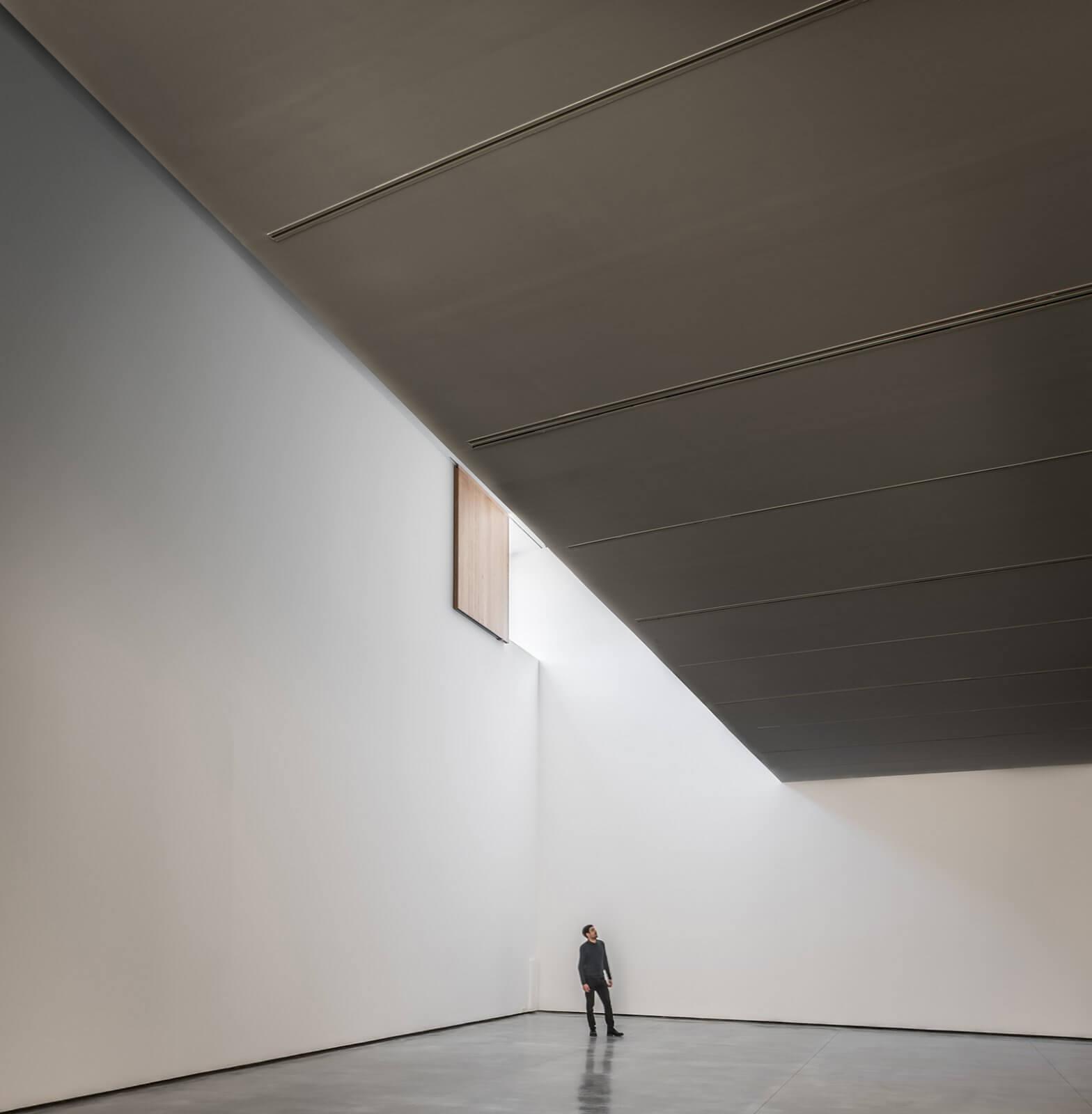 Museo de Arte Contemporáneo Helga de Alvear  - 6 44